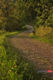Riding on a Trail in Ohio