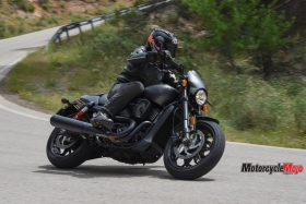 Riding Past Trees on the 2017 Harley Davidson Street Rod