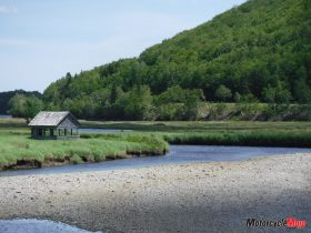 A Small House on Cabot Trail
